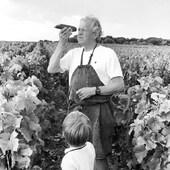 Grand père et petit fils évaluent la maturité du raisin 🍇 #harvest2020 #familygoals #familybusiness #grapes🍇 #august