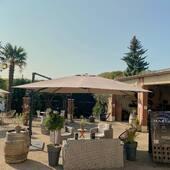 Profitez de notre bel espace extérieur pour faire une dégustation 😉🍾#tasting #outdoor #bluesky #sun #september #champagne #cumieres